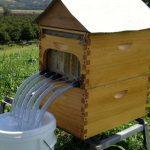 arı kovanlarının yerinin belirlenmesi