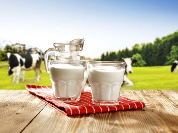 süt kalitesi